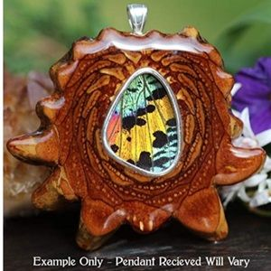 NWOT Sunset Moth Butterfly Wing Third Eye Pinecone